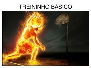 TREININHO BÁSICO