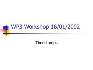 WP3 Workshop 16/01/2002