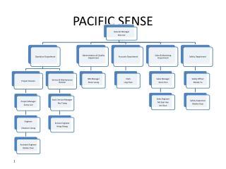 PACIFIC SENSE