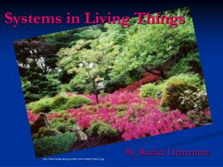 Systems in Living Things