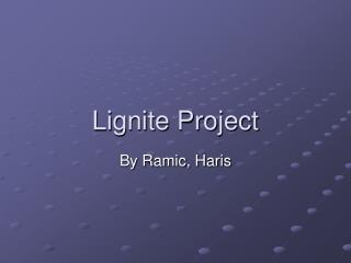 Lignite Project
