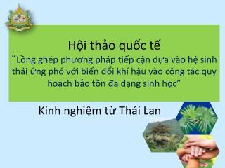 Kinh nghiệm từ Thái Lan