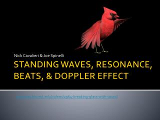 STANDING WAVES, RESONANCE, BEATS, & DOPPLER EFFECT