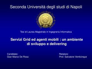 Seconda Universit� degli studi di Napoli