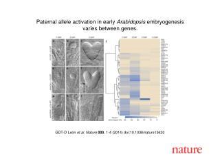 GDT-D Le ó n et al. Nature  000 , 1-4 (2014)  doi:10.1038/nature13620