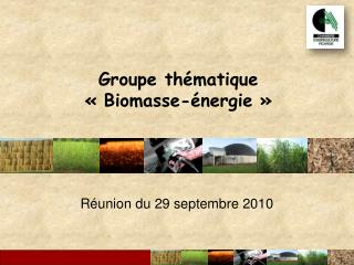 Groupe th�matique  ��Biomasse-�nergie��