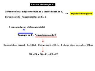 Consumo de E  =  Requerimientos de E