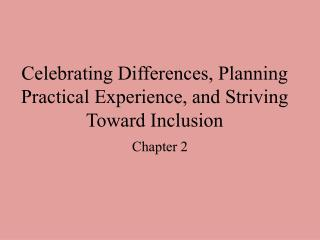 Celebrating Differences, Planning Practical Experience, and Striving Toward Inclusion