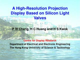 A High-Resolution Projection Display Based on Silicon Light Valves