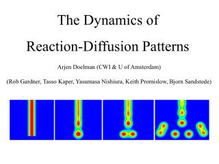 The Dynamics of  Reaction-Diffusion Patterns