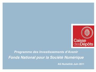 Programme des Investissements d'Avenir Fonds National pour la Société Numérique