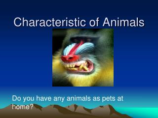 Characteristic of Animals