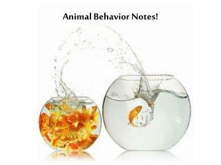 Animal Behavior Notes!
