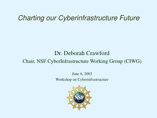 Charting our Cyberinfrastructure Future
