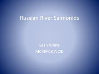 Russian River Salmonids