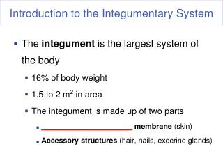 Introduction to the Integumentary System