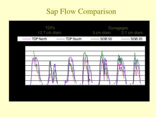 Sap Flow Comparison