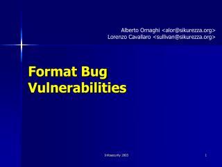 Format Bug Vulnerabilities