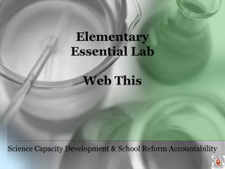 Elementary Essential Lab  Web This