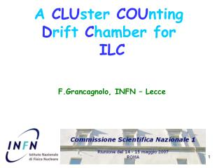 A  CLU ster  COU nting  D rift  C hamber for  ILC