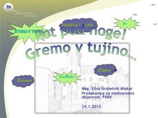 Mag. Silva Grobelnik Mlakar Prodekanica za mednarodno dejavnost, FKBV  24.1.2013