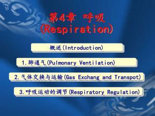 第 4 章 呼吸 (Respiration)