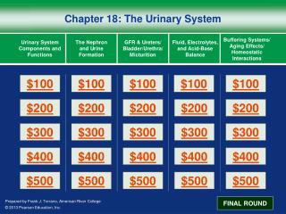Chapter 18: The Urinary System