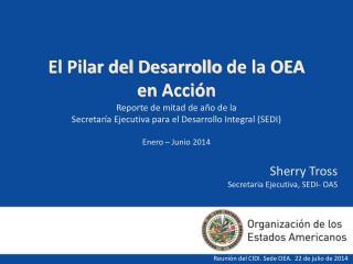 Sherry Tross  Secretaria Ejecutiva ,  SEDI- OAS