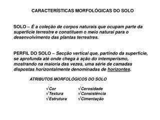 CARACTERÍSTICAS MORFOLÓGICAS DO SOLO