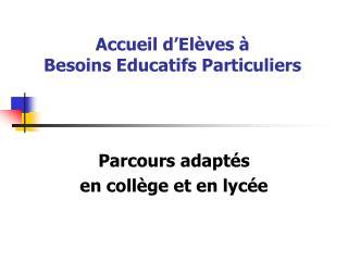 Accueil d'Elèves à  Besoins Educatifs Particuliers