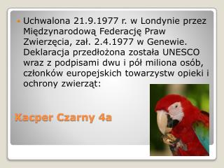 Kacper Czarny 4a