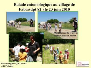 Balade entomologique au village de Fabas(dpt 82 ) le 23 juin 2010