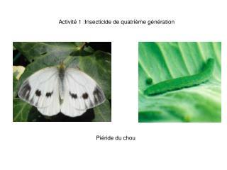 Activité 1 :Insecticide de quatrième génération