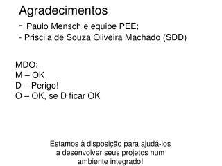Agradecimentos -  Paulo Mensch e equipe PEE; - Priscila de Souza Oliveira Machado (SDD)