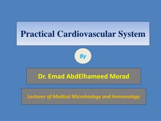 Practical  Cardiovascular System