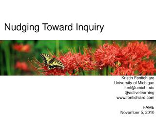 Nudging Toward Inquiry