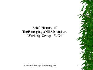 AMEDA 7th Meeting - Mauritius May 2008