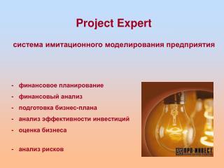 Project Expert система имитационного моделирования предприятия