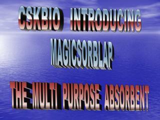 MAGICSORBLAP THE  MULTI  PURPOSE  ABSORBENT