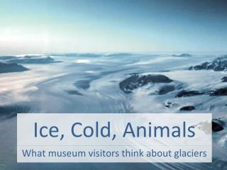 Ice, Cold, Animals