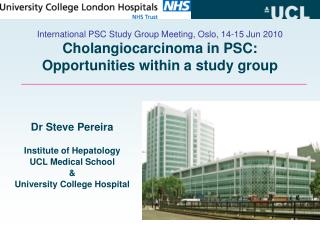 Dr Steve Pereira Institute of Hepatology UCL Medical School & University College Hospital