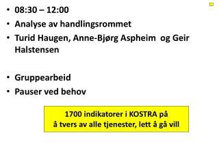 08:30  – 12:00   Analyse  av handlingsrommet