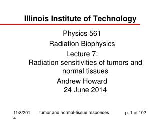 Illinois Institute of Technology