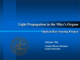 Light Propagation in the Mice�s Organs Optical Ray-tracing Project
