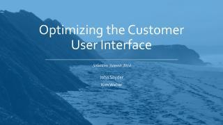 Optimizing the Customer User Interface