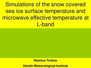 Rasmus Tonboe Danish Meteorological Institute