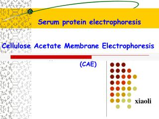 Cellulose Acetate Membrane Electrophoresis