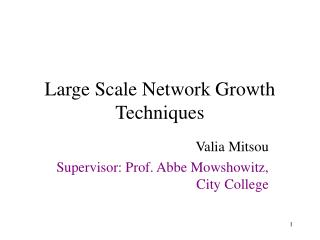 Large Scale Network Growth Techniques