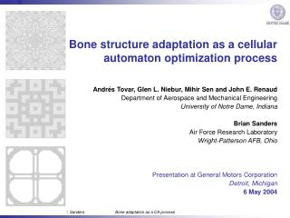 Bone structure adaptation as a cellular automaton optimization process