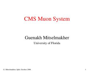 CMS Muon System